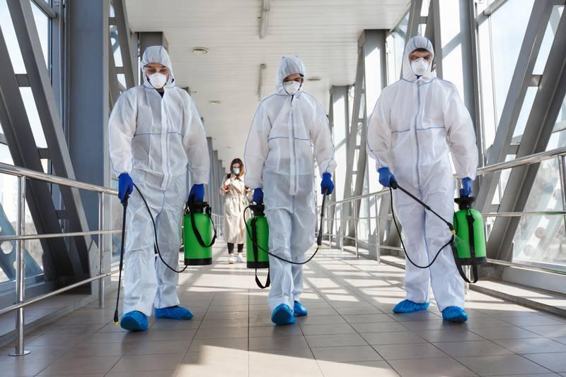 Covid 19 pandemia