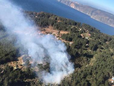 Conaf decreta una alerta amarilla en Valparaíso por incendio forestal en Laguna Verde